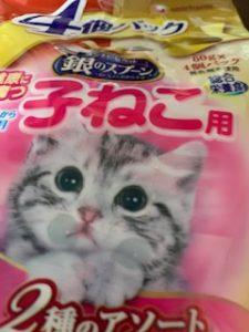 子猫用ごはんたて